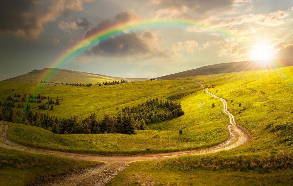 Image result for good land