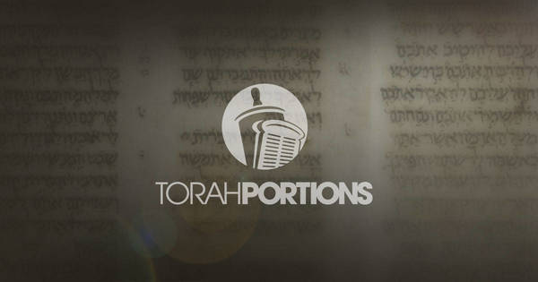 This Year | Portions | Torah Portions